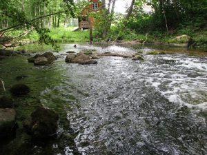 Baidarių nuoma Ligajos upe